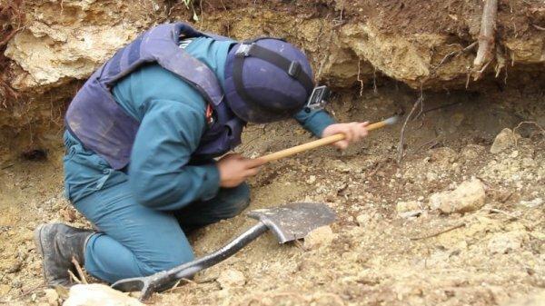 На садовом участке в Севастополе саперы выкопали 850 снарядов времен войны