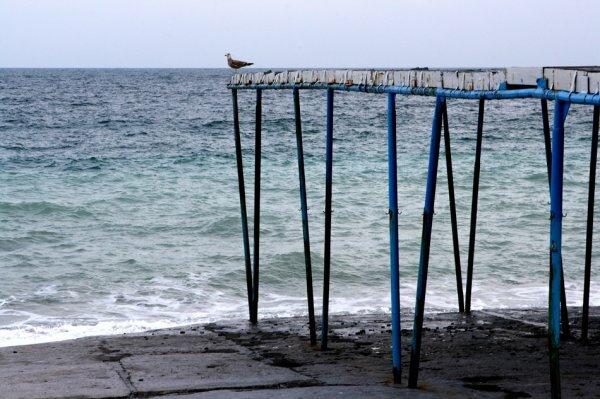 Неделя в Крыму будет ясной не холодной